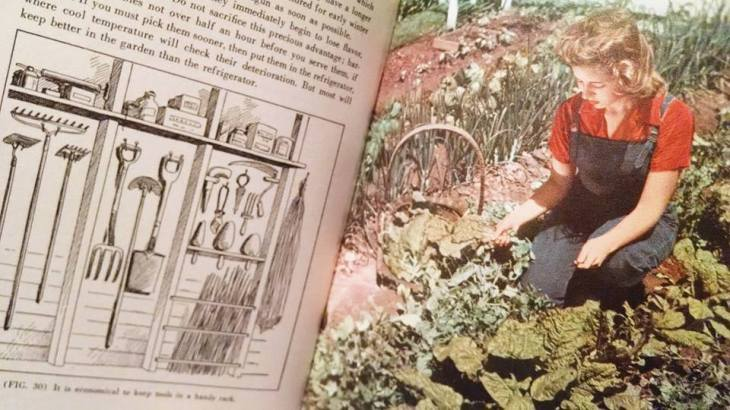 victory garden book for historygal